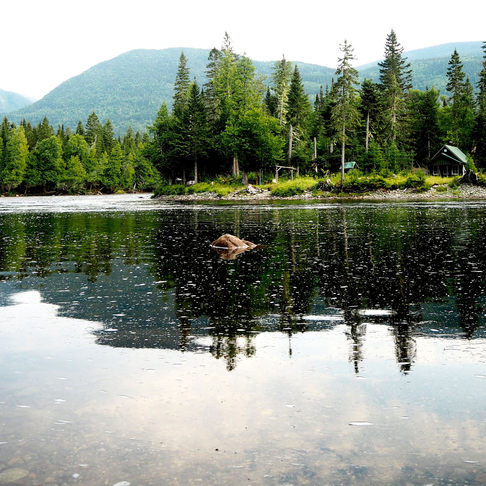 Gaspésie parc naturel