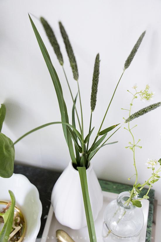 vignettes, pilea, grass, weeds, interior vignettes grass, timoty grass