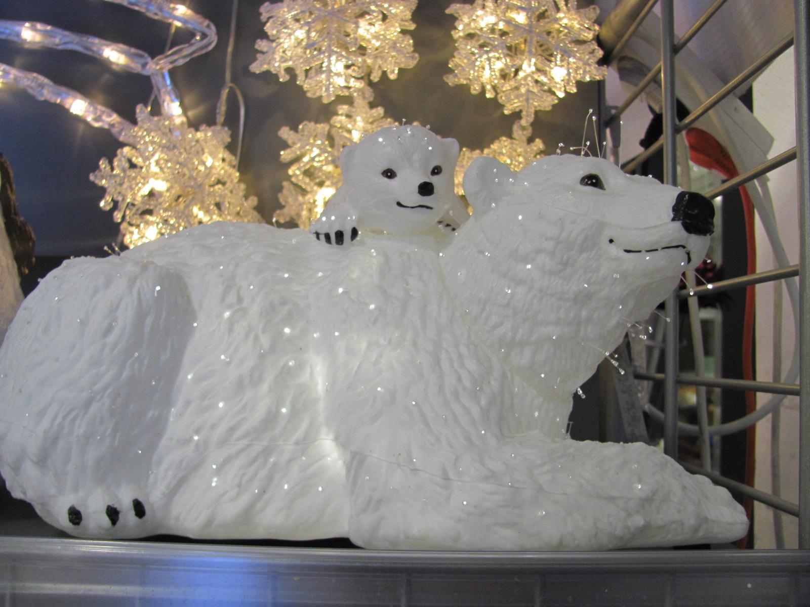 Ursoaica polara