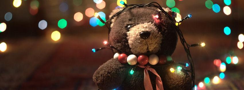 Adorable teddy bear facebook cover