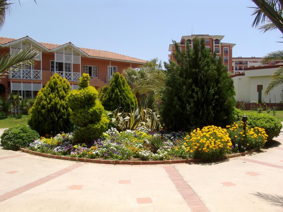 Arte y jardiner a arriates ornamentales en el jard n for Arbustos ornamentales para jardin