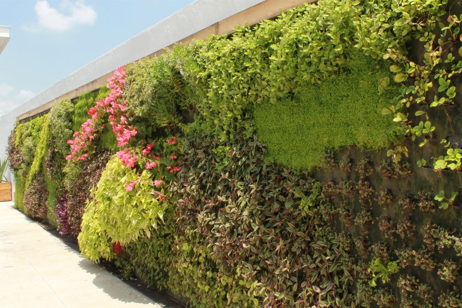Vida verde muro verde andares for Muros verdes naturales