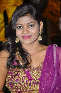 Actress-Soumya-Stills-at-Venkatadri-Express-Audio-Launch