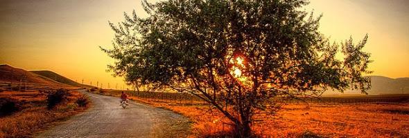 Andando de Bicicleta Ao Por do Sol