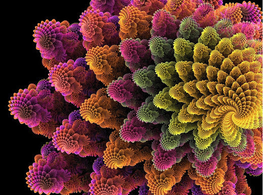 Fractal Flower | Art Wallpaper