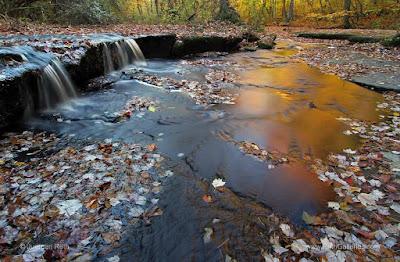 http://juergen-roth.artistwebsites.com/featured/rhode-island-stepstone-falls-juergen-roth.html