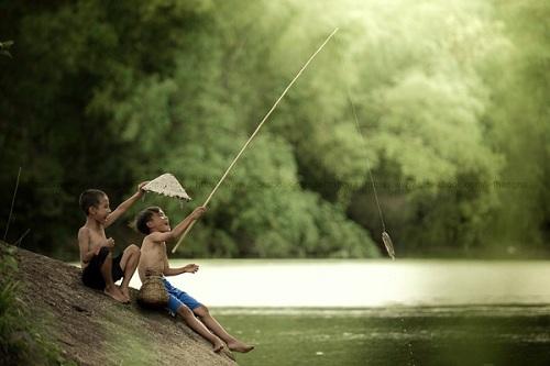Cách câu cá rô đồng hiệu quả