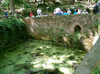 La bassa de la Font de Sant Mateu