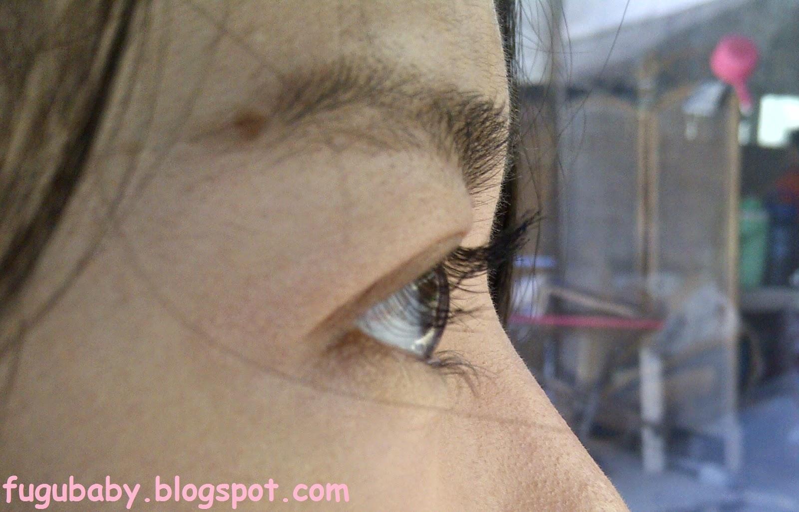 Shu Uemura Eyelash Curler Review
