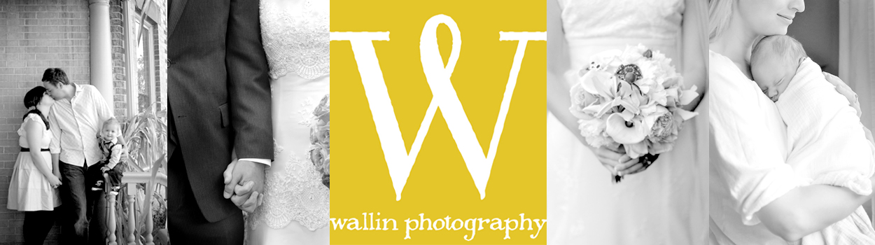 wallin photography