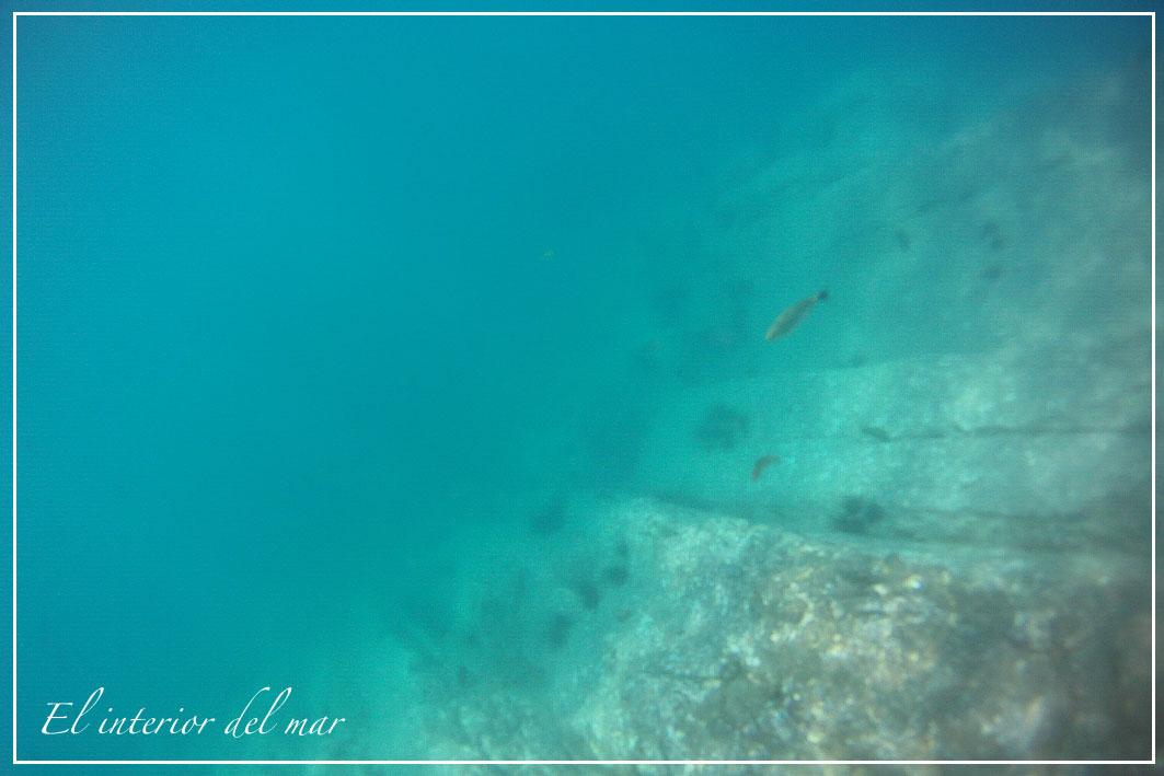 Mar interior del mar ural