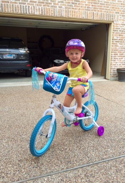 The Dodson Diary Big Girl Bike