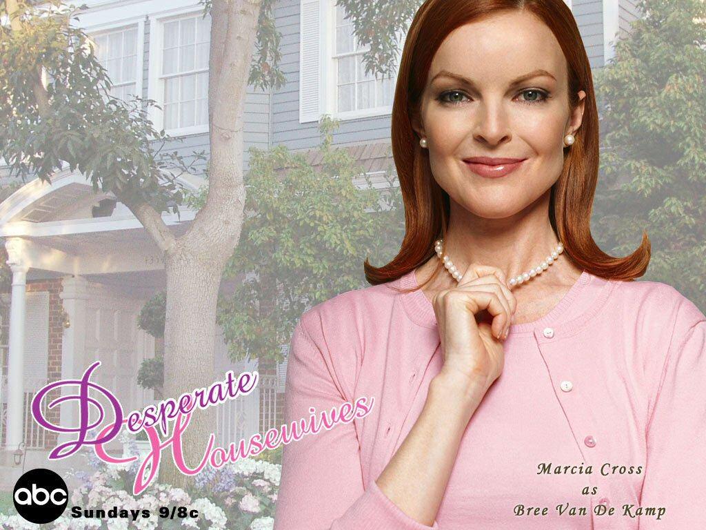 http://1.bp.blogspot.com/-7U93TUtvVVU/Thoj386lGXI/AAAAAAAABKs/9JlAk6cyhQI/s1600/desperate-housewives-bree.jpg