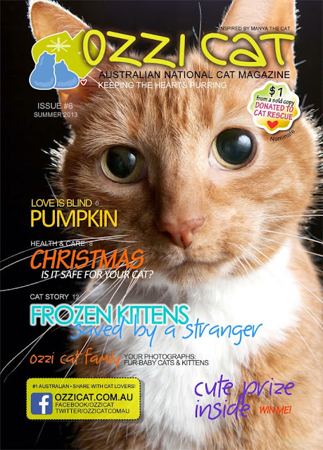 Ozzie Cat Magazine