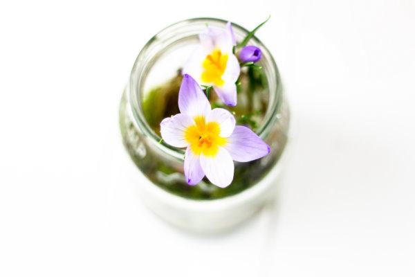 DIY Deko: Frühling im Glas