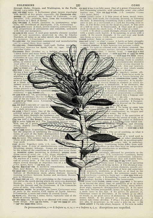 you might also like - Prints On Old Book Pages