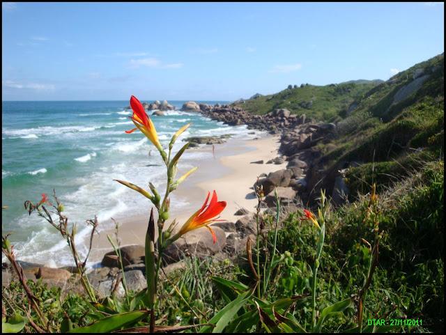 foto praia da lagoinha
