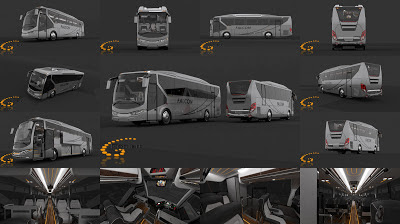 Design bus 3D Falcon Brosur