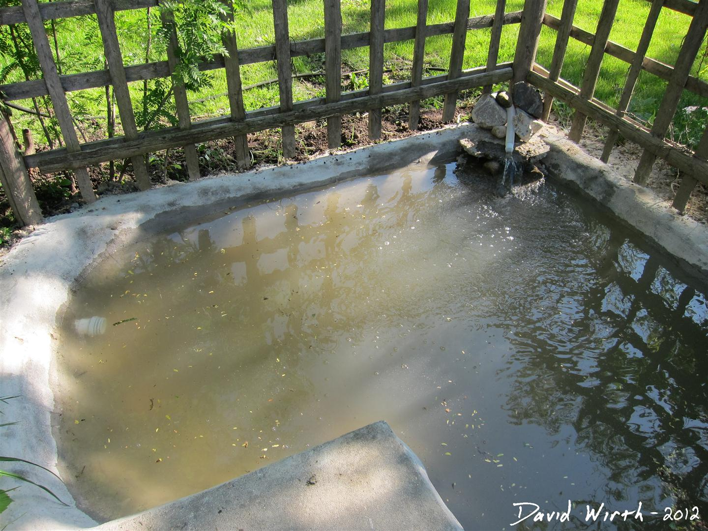 Cement Backyard Pond : then filled up the pond with water for its first real test
