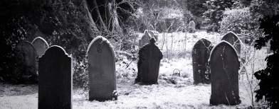 Misteri Ratusan Makam Kuno Dengan Nisan Bernomor Di Bengkulu