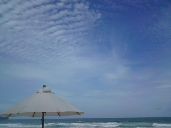 Urlaub in Thailand (glutenfreies Essen - ETHIAD Airlines)