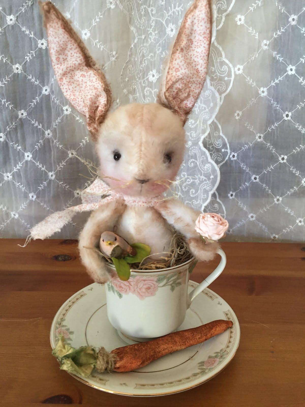 Teacup Bunny!
