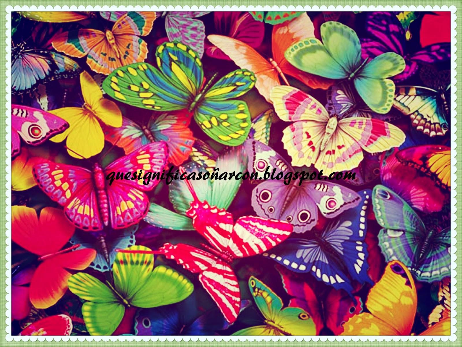 Que significa so ar con que significa so ar con mariposas - Bruguer colores para sonar ...