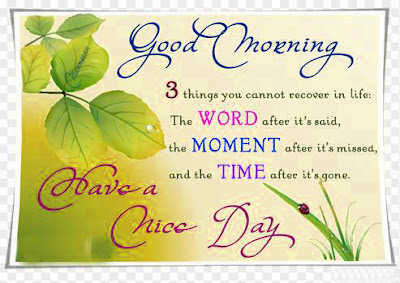 have a nice day good morning