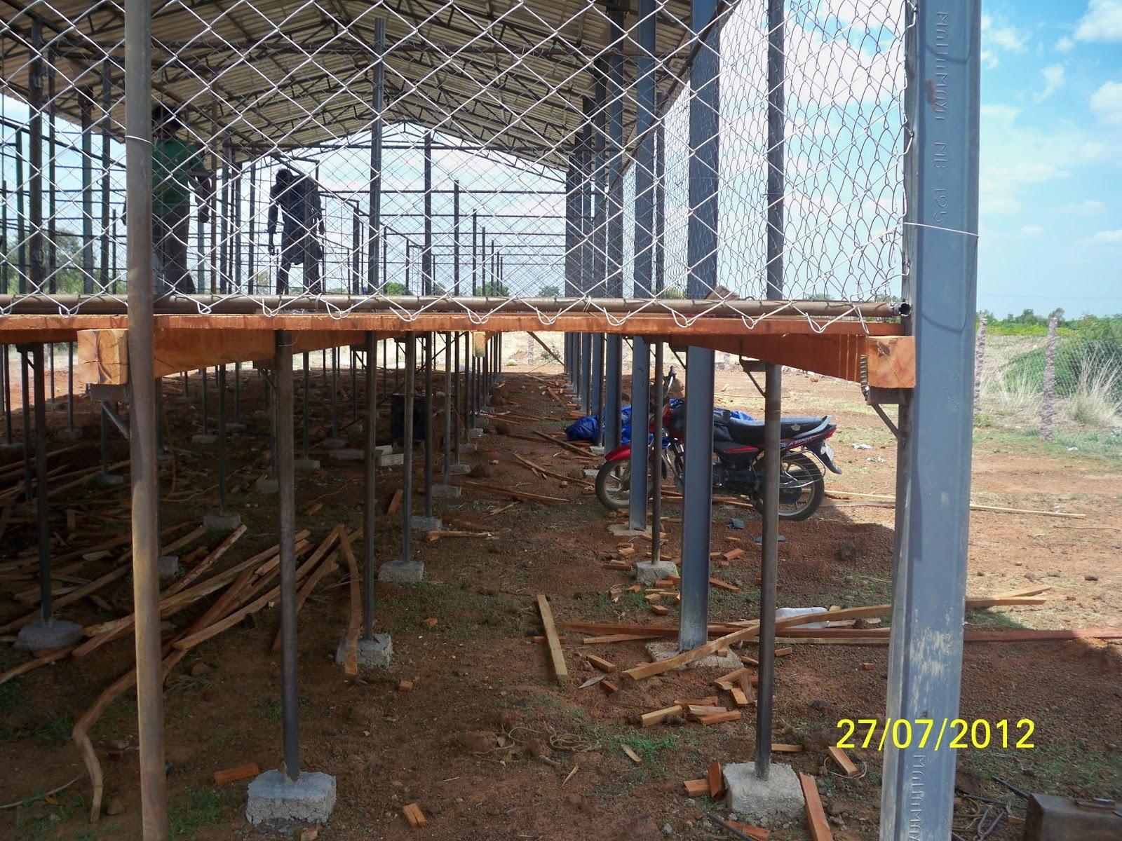 Goat farm shed design
