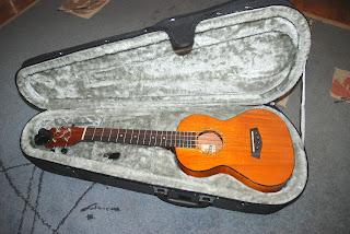 pod ukulele case with Islander MST-4
