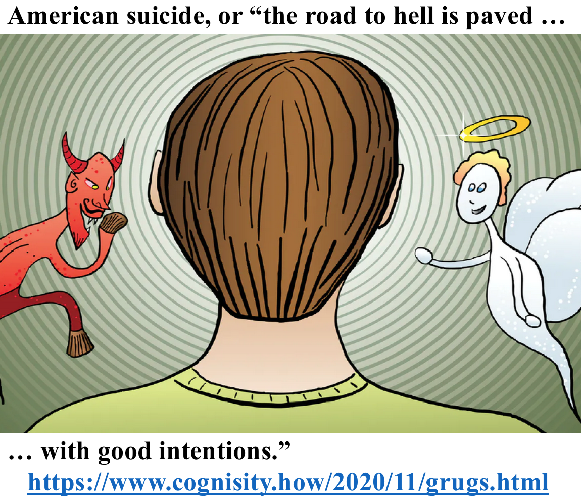 "American suicide, or ""the road to hell is paved with good intentions."" (just click on the picture)"