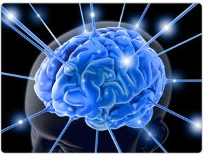 Brainwave Gelombang Otak