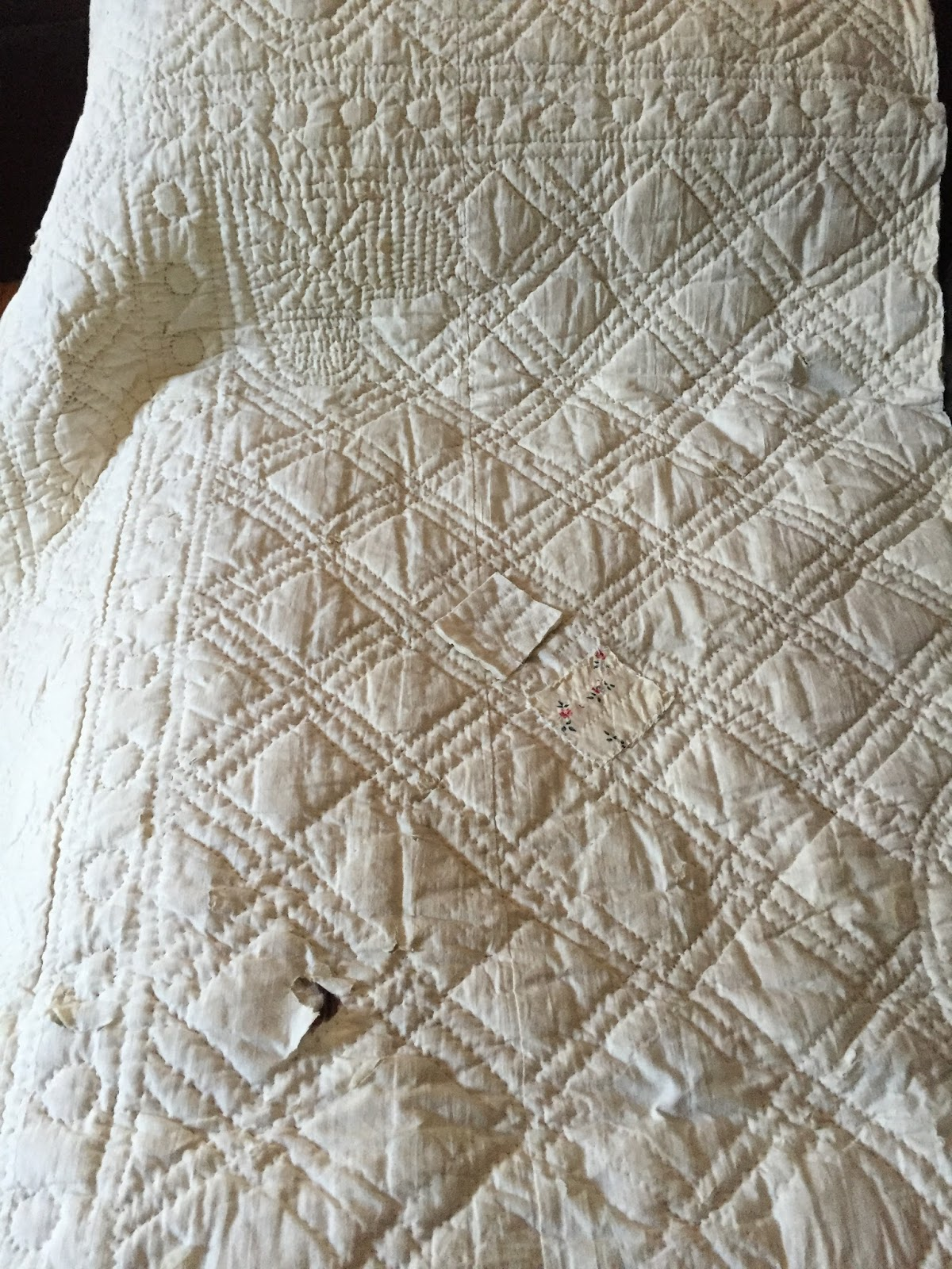 Quilted Cotton Taffeta