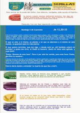 Lectio Divina 5º Domingo de Cuaresma