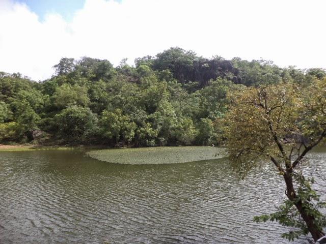 Lake in Panchmadi