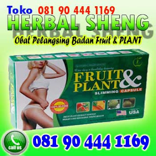obat pelangsing badan fruit and plant Original