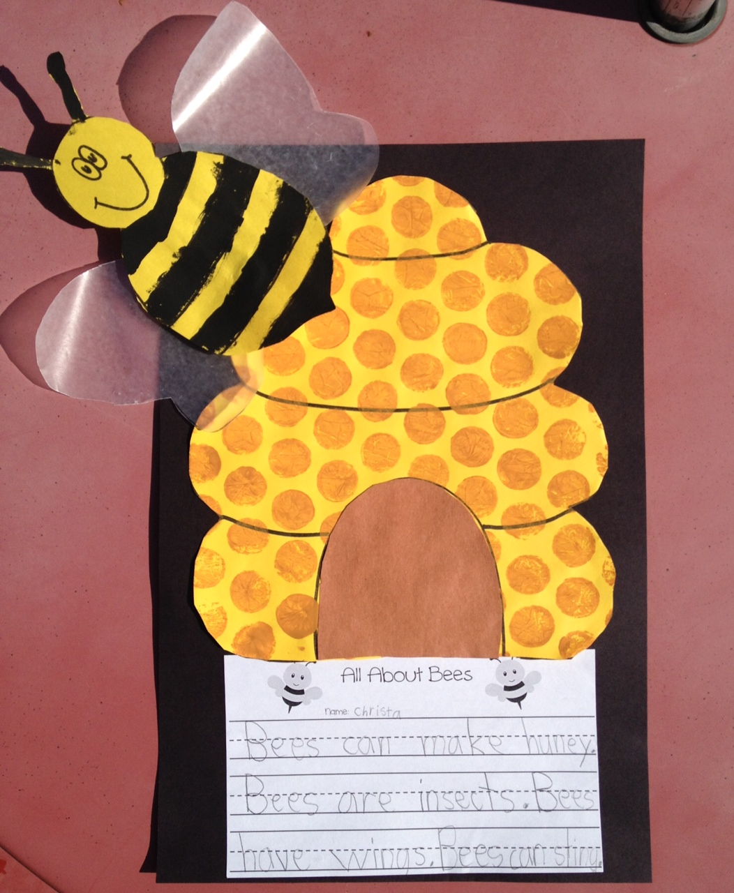 honey bee essay Free essay: since 1992, the honey bee has been oklahoma's state insect,  largely because honey bees convey such a significant task in agriculture the  honey.
