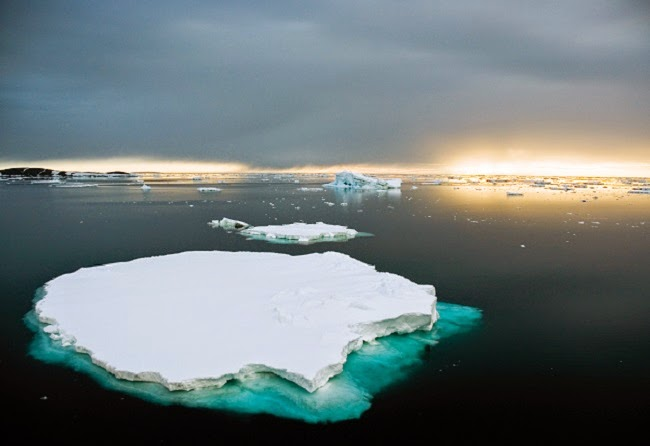 Antarctic ice melt may already mean dramatic impacts on sea-level rise. (Image Credit: Tanya Patrick/CSIRO via Wikimedia Commons) Click to Enlarge.