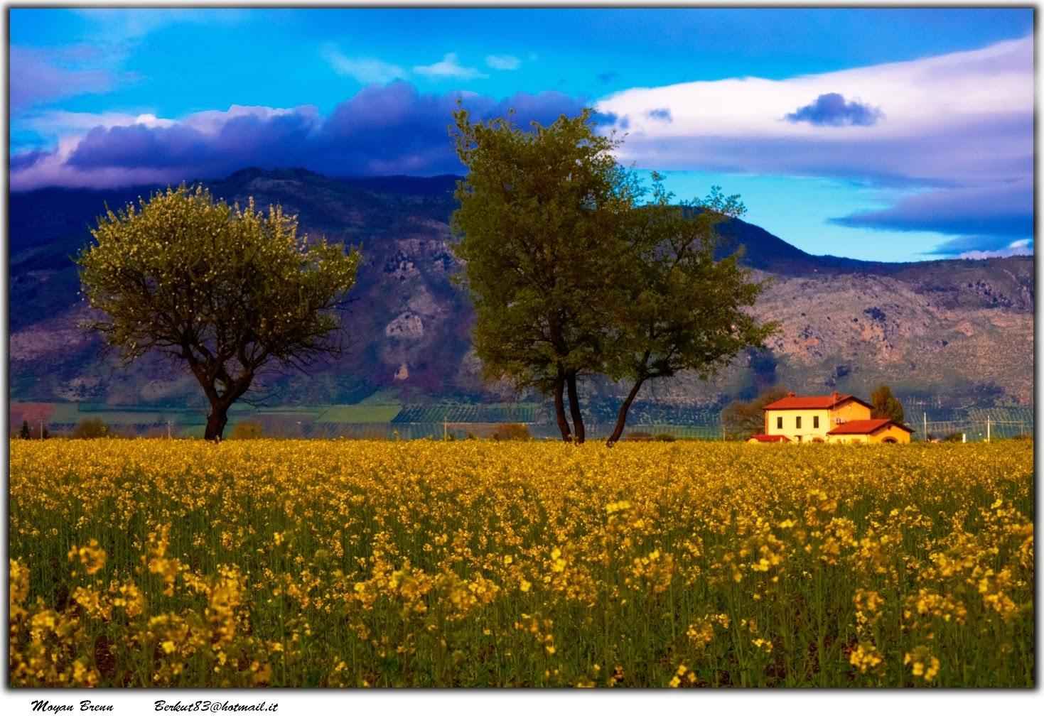 http://www.flickr.com/photos/aigle_dore/4651201666/in/photolist-861Cdb-9zerZS-a4VWq8-cjhHUA-e4tFtQ-848gkp-dJRB5D-d9zFDq-d6gsyW-fmd5Jq-aA3CRr-fnTEzu-eXN1Ya-g7pyU-fstQMm-dQoNwe-3k1DUL-3jVV8D-bWE5vE-bWE5Js-bWE6xQ-bWE57U-bWE6pA-57g3jE-fBwdB5-8CDRTX-hvVuov-fpwo4x-bLWDAr-dQZam7-5pzJVG-hJcDJv-dQZaPY-dQTB5z-dQTGbM-dQZeqN-dQZdq9-jDtxQ8-c7zHF9-6tFSWn-8CaYRm-k51JeN-7fD2j9-fQc3wH-fomkYS-8SjYsh-7ZQYvq-4jygEX-9MvUj5-cLR59E-aPcehZ/