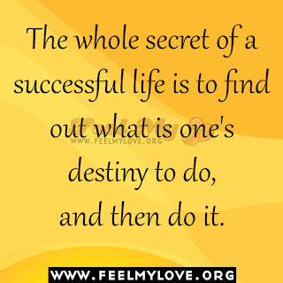 The whole secret of a successful life