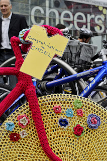 bike, bicycle, tea cozy, cosy, beanie, knit, knitting, craft, cadel, evens, cadel evans, flowers, frame, the biketorialist, biketorialist, tim macauley, timothy macauley, crochet, wool, cover