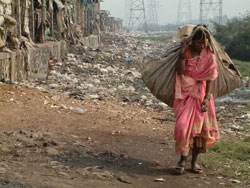 dalit catando lixo