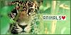 http://ohmydarling.org/animals