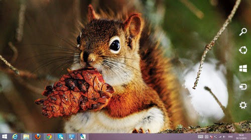 Squirrel Theme For Windows 7 And 8 8.1