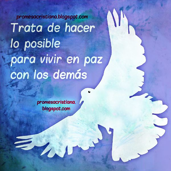 Reflexión cristiana corta acerca de tener paz, mantener la paz en la familia, con los hermanos y familia.