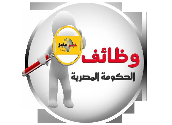 """اعلان مجلس الوزراء""""وظائف الجهاز الوطنى لتنمية شبة جزيرة سيناء للمؤهلات العليا والدبلومات"""""""