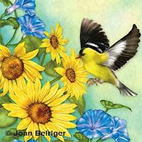 Joan Beiriger's Art