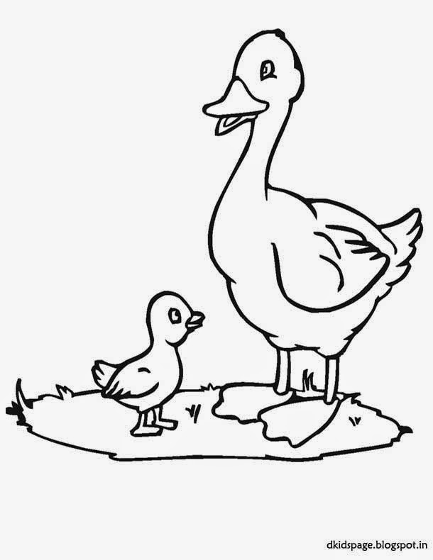 kids page duck coloring pages download printable duck coloring picture. Black Bedroom Furniture Sets. Home Design Ideas