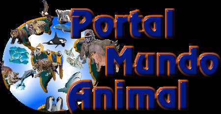Portal Mundo Animal - mundo animal