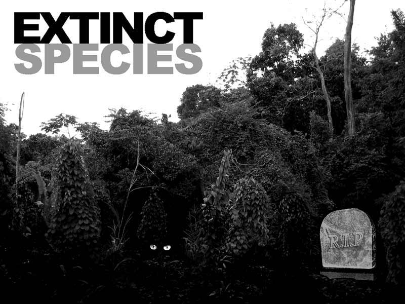 EXTINCT SPECIES